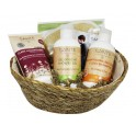 SANTE SET HIGIENE FAMILY+REGALO CESTA